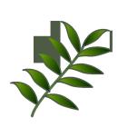 木の芽線太目