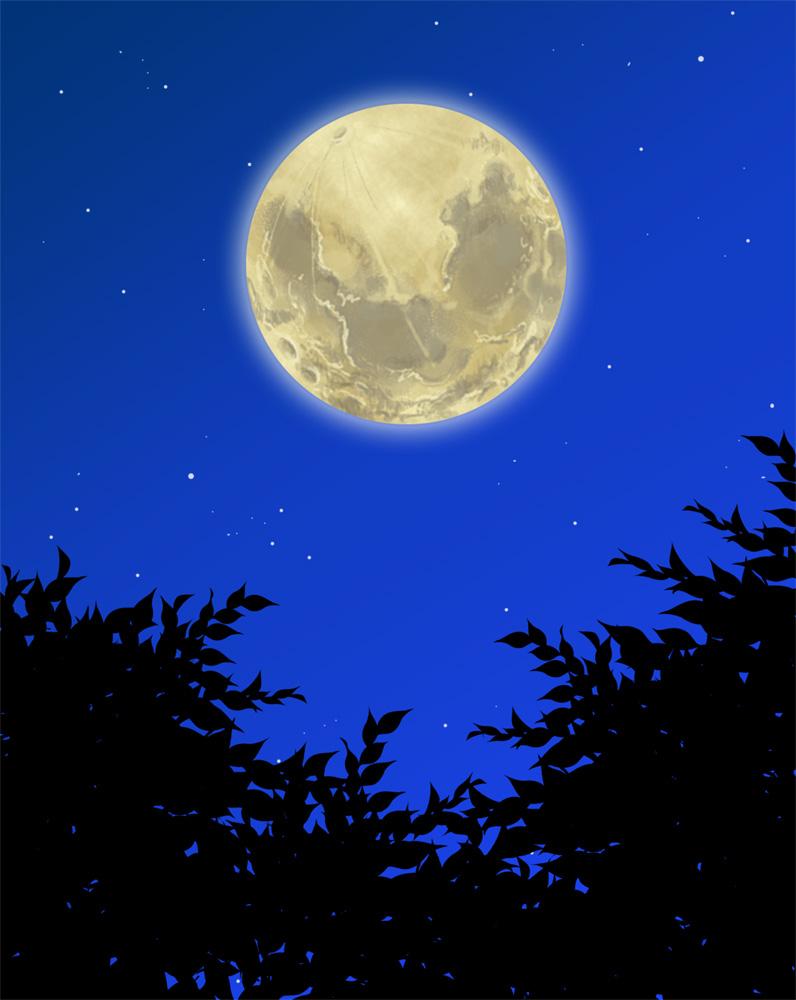 月の画像 p1_25