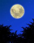 背景夜の空と月