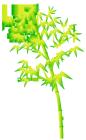 竹・笹の葉