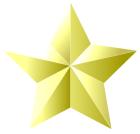 七夕飾り金の星