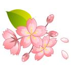 お花のマーク桜2印刷用