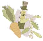 ニンジンとオリーブオイルとオリーブの花1