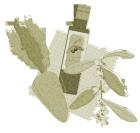 ニンジンとオリーブオイルとオリーブの花2