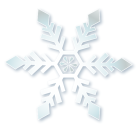 雪の結晶b201101