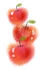 手描きタッチなゾりんご1