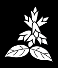 白黒サルビア2