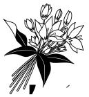 白黒白い花束