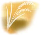 食欲の秋と家族ご飯8