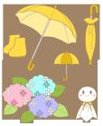 梅雨セット