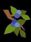 20180114-73
