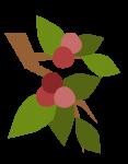 20180114-74